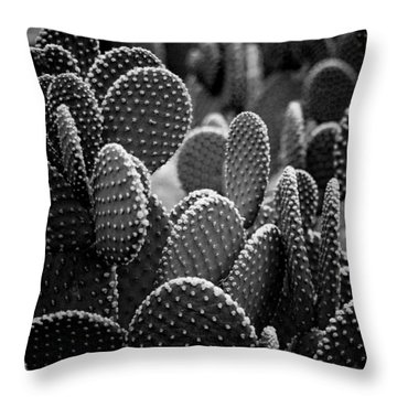 Cactus 5252 Throw Pillow by Timothy Bischoff