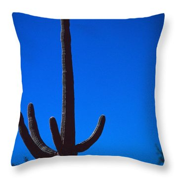 Cactus And Moon Throw Pillow