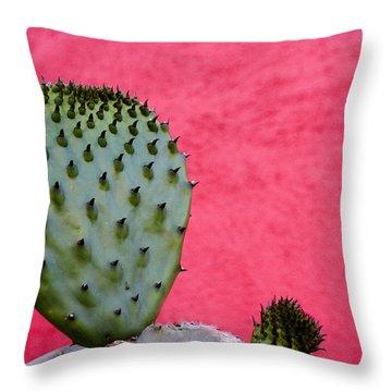 Arizona Cactus Throw Pillows