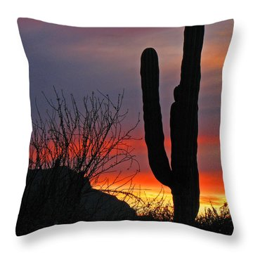 Throw Pillow featuring the photograph Cactus At Sunset by Marcia Socolik