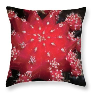 Cactus Beauty  Throw Pillow