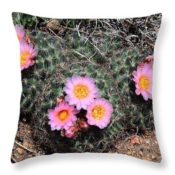 Cactus Blooms Throw Pillow