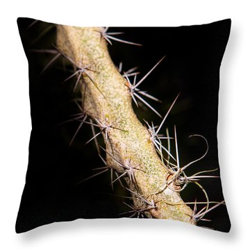 Cactus Branch Throw Pillow