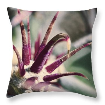 Cactus Crown Throw Pillow by Kelley King