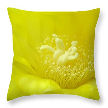 Cactus Dance Throw Pillow by Bill Morgenstern