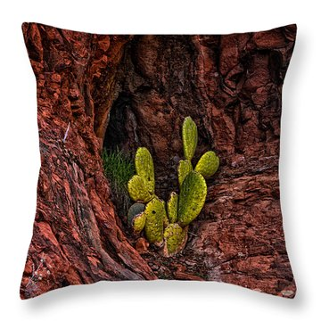 Cactus Dwelling Throw Pillow by Mark Myhaver