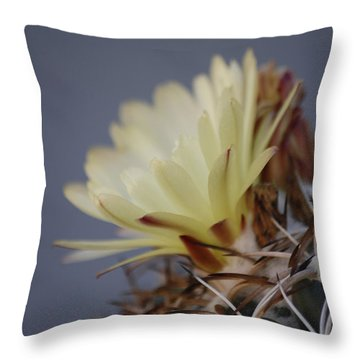 Cactus Flower Throw Pillow by Anne Rodkin