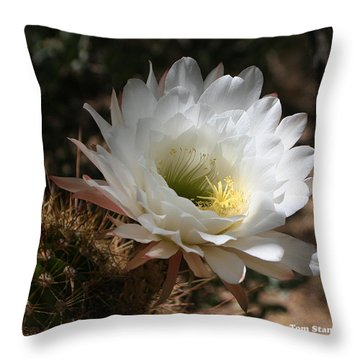 Cactus Flower Full Bloom Throw Pillow