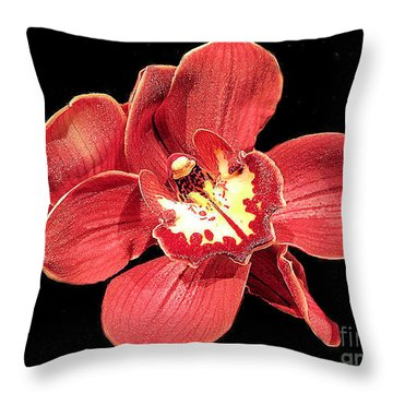 Throw Pillow featuring the photograph Cactus Flower No. 10 by Merton Allen