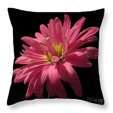 Throw Pillow featuring the photograph Cactus Flower No. 2 by Merton Allen