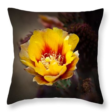Cactus Flower Throw Pillow by Swift Family