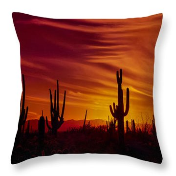 Cactus Glow Throw Pillow by Mary Jo Allen
