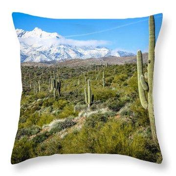 Cactus In Arizona Throw Pillow