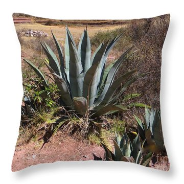 Cactus In Peru Throw Pillow