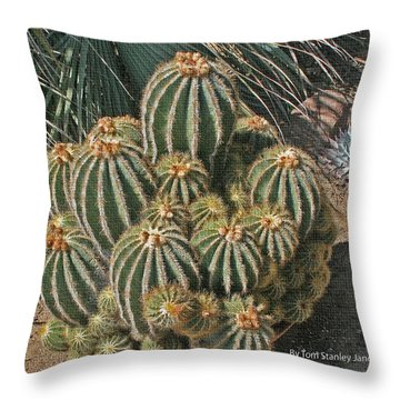 Cactus In The Garden Throw Pillow by Tom Janca