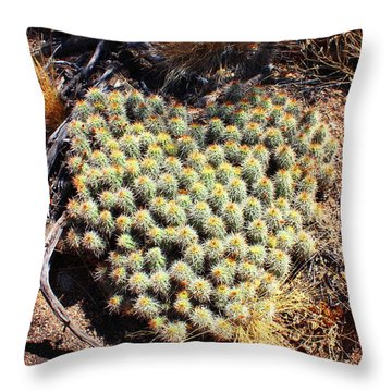 Throw Pillow featuring the photograph Cacti Need Love Too by Natalie Ortiz