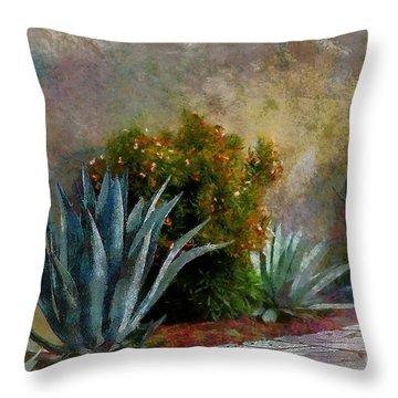 Throw Pillow featuring the photograph Cactus On The Wall by John  Kolenberg