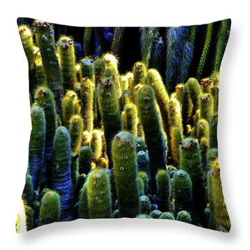 Throw Pillow featuring the photograph Cactus Patch Redux by Joseph Hollingsworth
