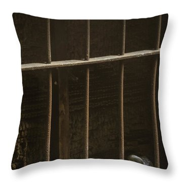 Caged Throw Pillow by Margie Hurwich