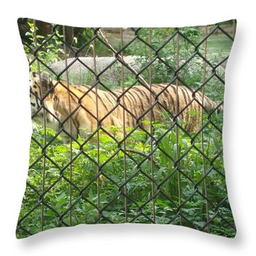 Throw Pillow featuring the photograph Caged by Fortunate Findings Shirley Dickerson