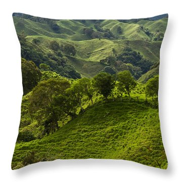 Caizan Hills Throw Pillow by Heiko Koehrer-Wagner