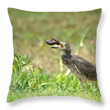 Cajun Feast For Breakfast Throw Pillow