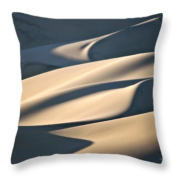 Cake Frosting Throw Pillow
