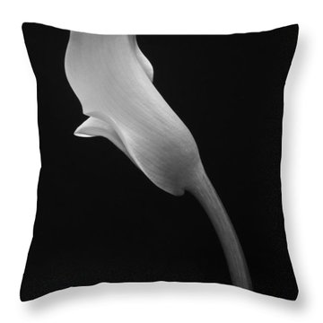 Cala Lilly 1 Throw Pillow
