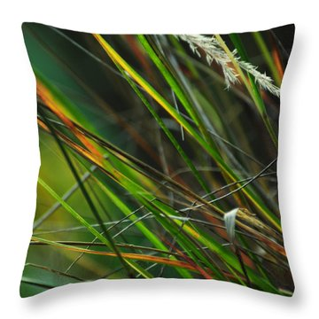 Calamagrostis Lines Throw Pillow by Rebecca Sherman