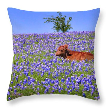 Throw Pillow featuring the photograph Calf Nestled In Bluebonnets - Texas Wildflowers Landscape Cow by Jon Holiday