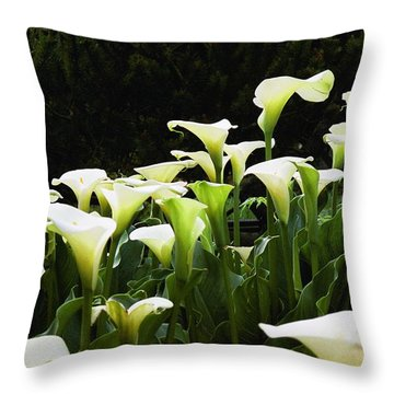 Cali Lily Throw Pillow by Kim Prowse