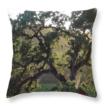 Throw Pillow featuring the photograph Cali Setting by Shawn Marlow