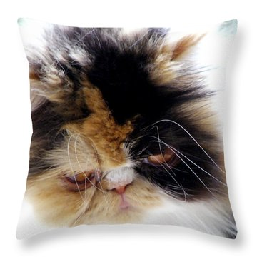 Cali The Dreamer Throw Pillow