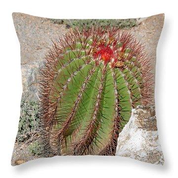 California Beauty Throw Pillow by Christine Till