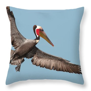 Throw Pillow featuring the photograph California Brown Pelican With Stretched Wings by Ram Vasudev