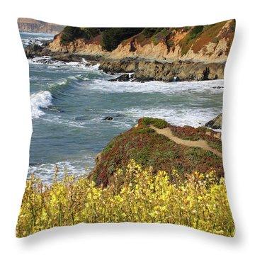 California Coast Overlook Throw Pillow by Carol Groenen