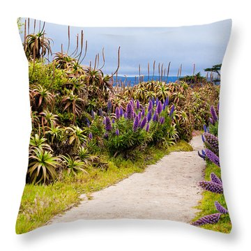 California Coastline Path Throw Pillow