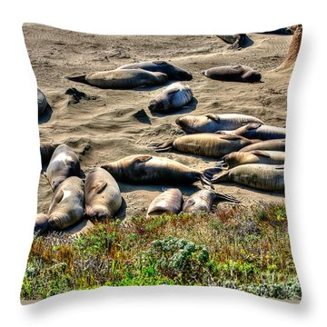 Throw Pillow featuring the photograph California Dreaming by Jim Carrell