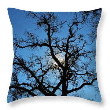 California Oak Sun Tree Throw Pillow
