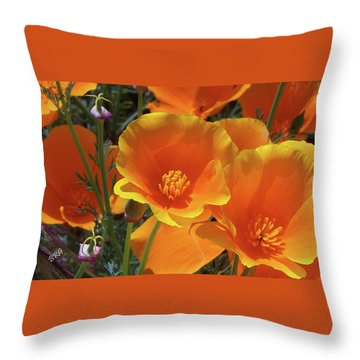 California Poppies Throw Pillow by Ben and Raisa Gertsberg