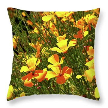 California Poppies Throw Pillow by Ed  Riche