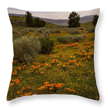 California Poppies In The Antelope Valley Throw Pillow by Nina Prommer
