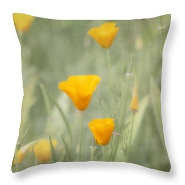 California Poppies Throw Pillow by Kim Hojnacki