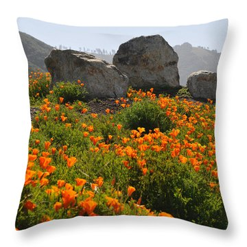 Throw Pillow featuring the photograph California Poppies by Lynn Bauer