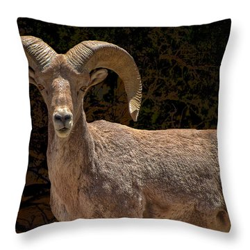 Call Me Dude Throw Pillow by Britt Runyon