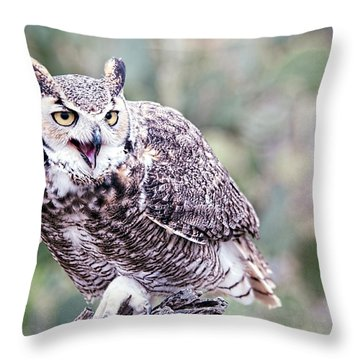 Throw Pillow featuring the photograph Call Of The Owl by Dan McManus