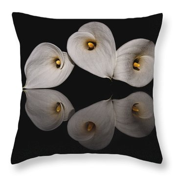 Calla Circle D4423 Throw Pillow by Wes and Dotty Weber