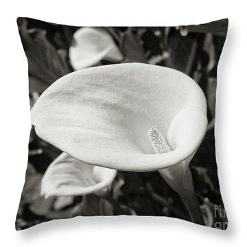 Calla Lilies Bw 3 Throw Pillow