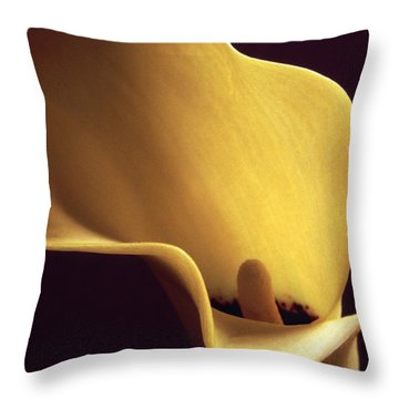 Calla Lily Close Up Throw Pillow by Liz Leyden