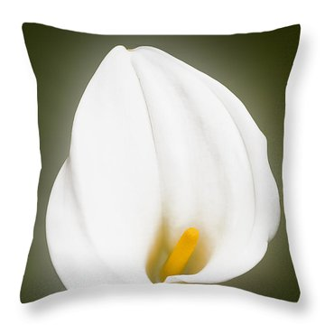 Calla Lily Flower Glow Throw Pillow